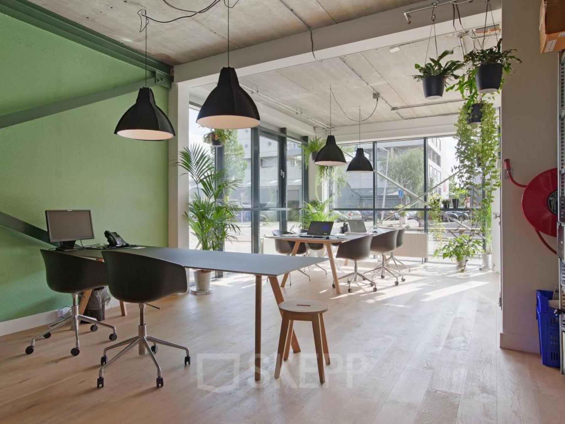 scandinavisch kantoordesign inrichting kantoorruimte kantoorplanten2