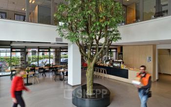 boom begane grond personen kantoorpand amsterdam zuidoost karspeldreef