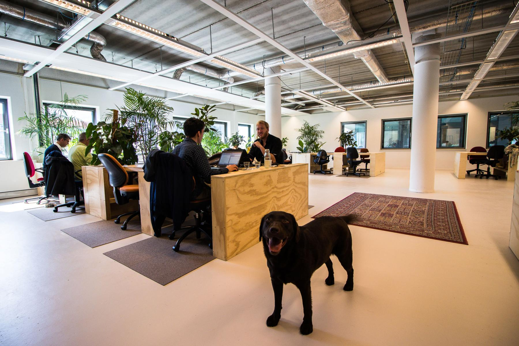 Flexible working space Amsterdam