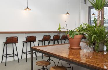 chairs long table plants lights wall