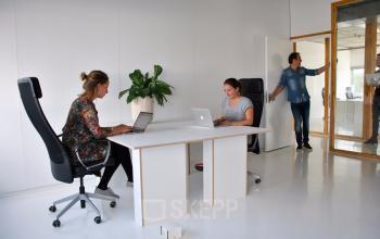 tafel stoel plant muren wit modern