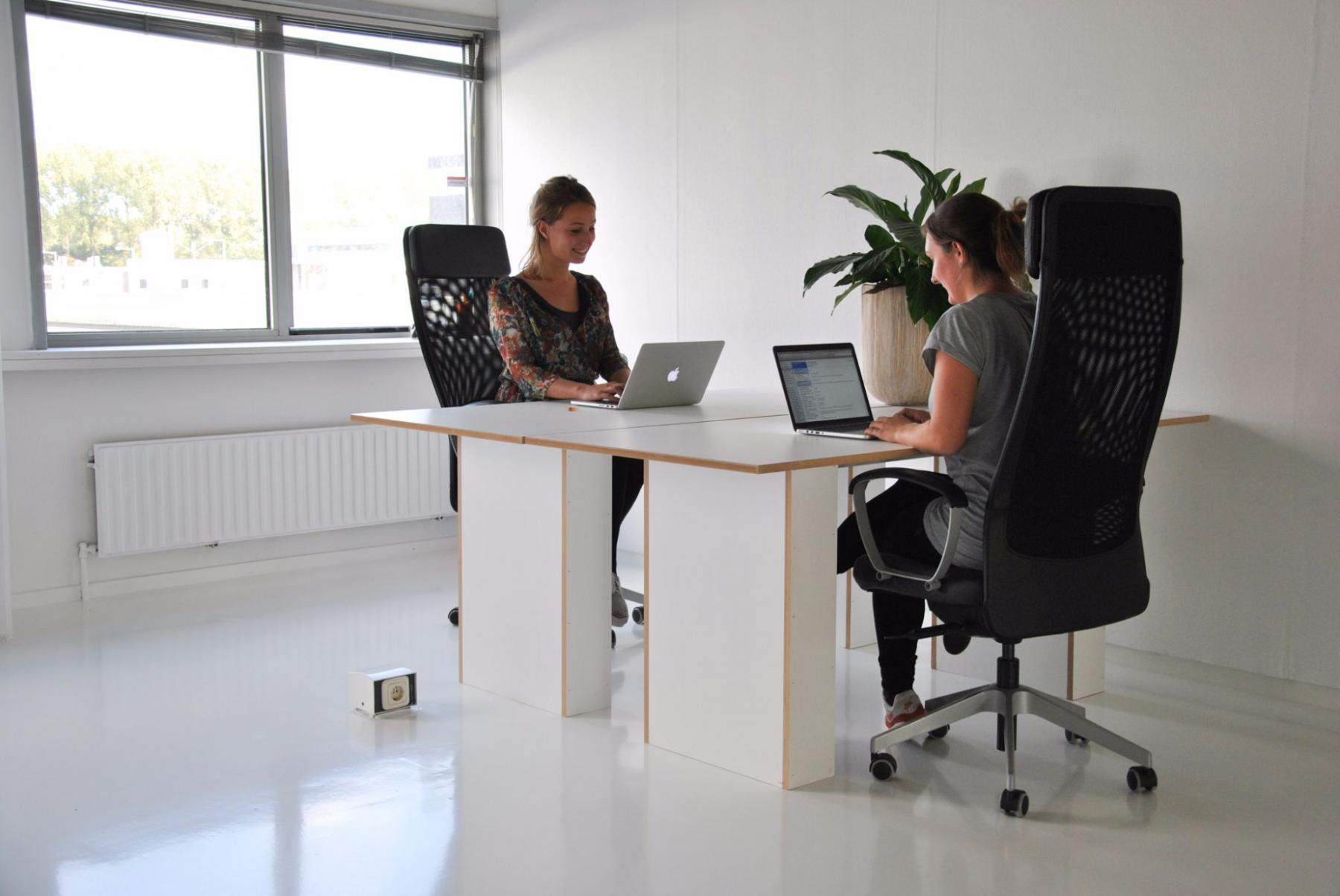 kantoorruimte bureau bureaustoelen plant ramen licht lichtinval