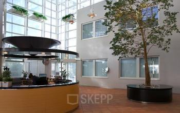 entree receptiebalie receptionisten planten arnhem kantoor