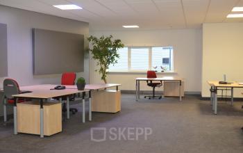 gemeubileerde kantoorkamer bureau's stoelen raam uitzicht plant vloerdekking duiven stenograaf