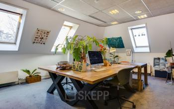 creative office room haarlem for rent windows