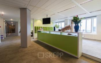 green reception desk in office building