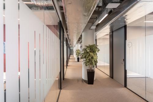 rotterdam kantoorruimte kantoorgebouw werkplek flexplek co-workingspace dakterras kantine vergaderzalen receptie dagkantoren