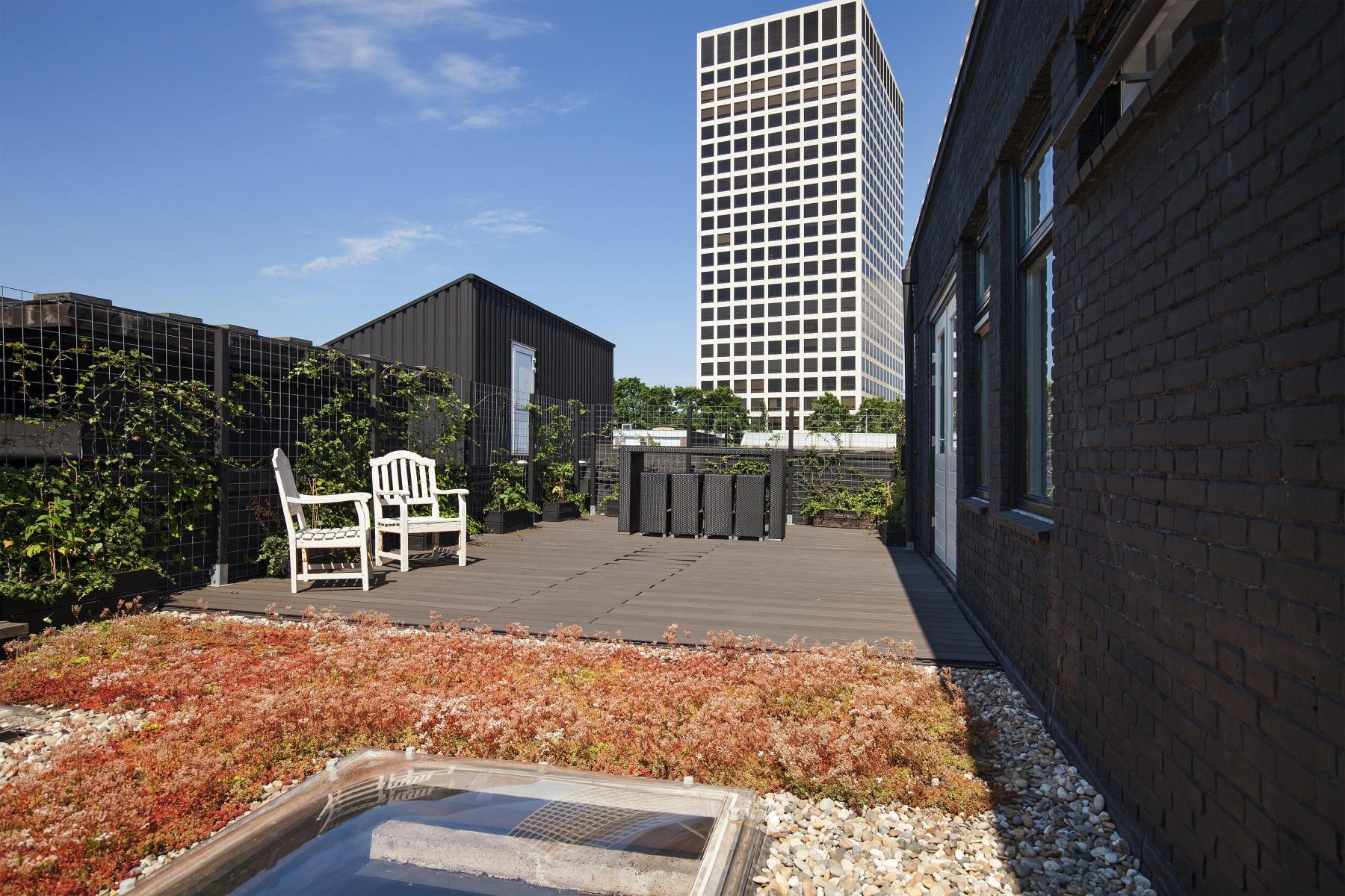 kantoorpand huren aan van helmontstraat in rotterdam met dakterras