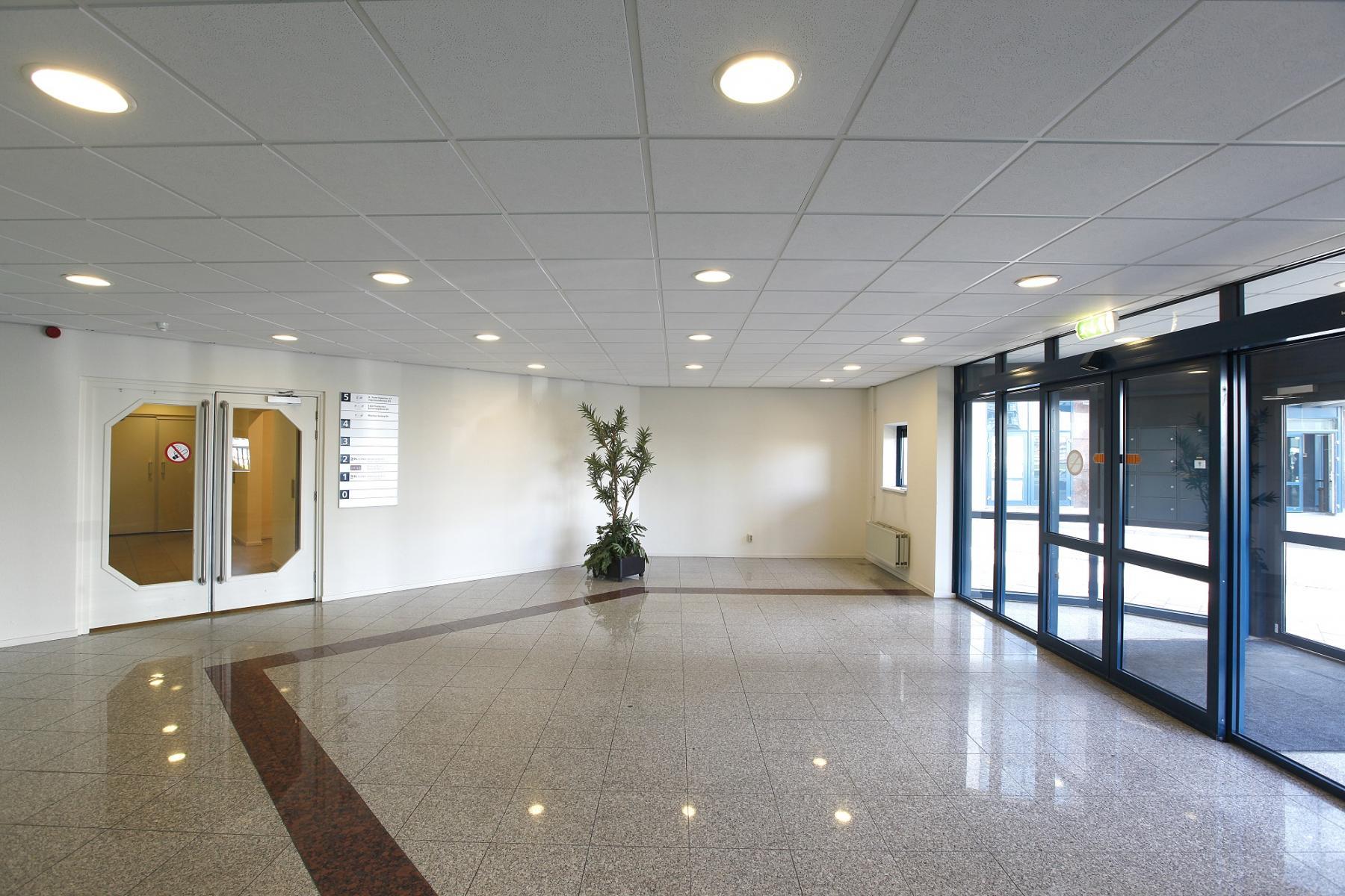 entrance office building doors green plant